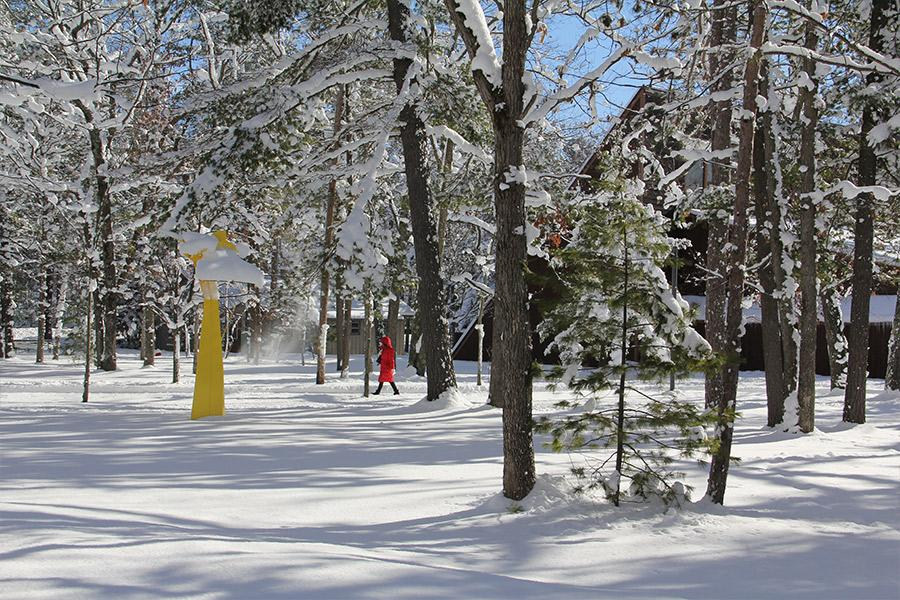 A woman in a red coat walks across a snowy, forested area