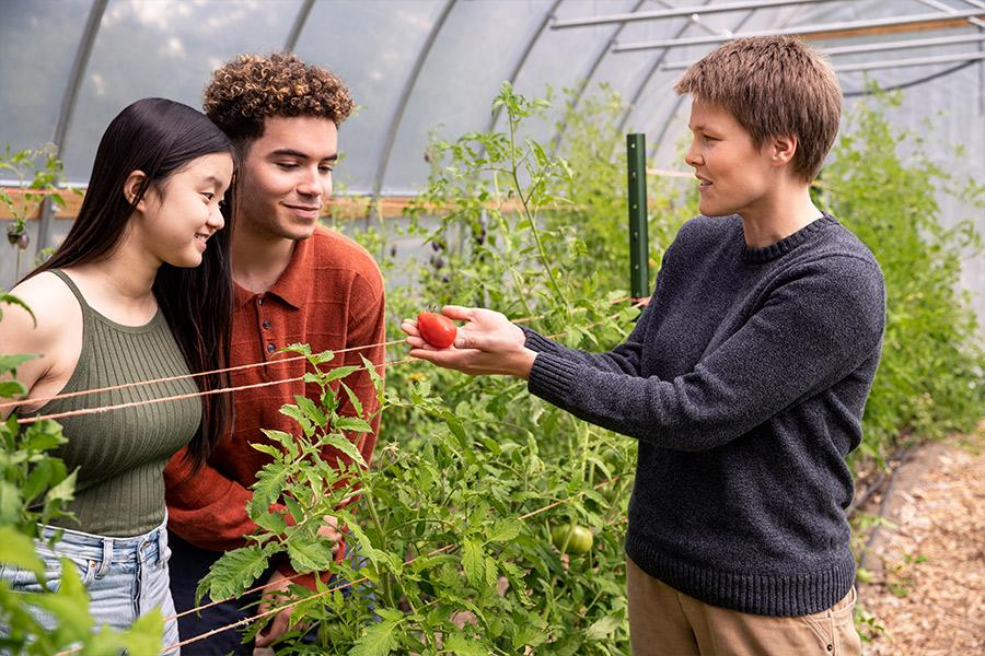 Two students and a faculty member look at a tomato during ecology class